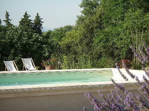 Chambre d'hote Vaucluse - Le plein été au Mas du Haut-Roussillac