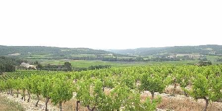 Le mas du haut-Roussillac En haut du Mas - Cépages des Côtes du Rhône et lav