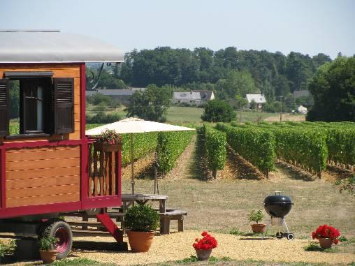 La roulotte est installée face aux vignes à perte de vue