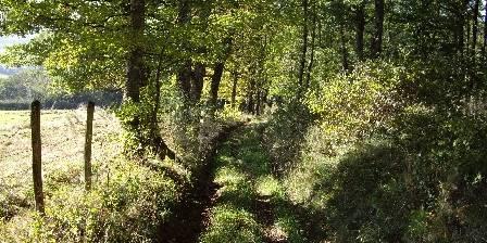 Les 4 Saisons en Morvan Nombreux chemins de randonnée