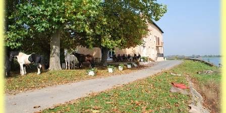 Chambre d'hotes Jean de Saône > les cavaliers à la terrasse du restaurant