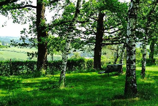 La Croix Longue - Une partie du jardin