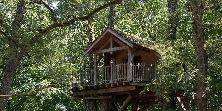 Château de Piolant Dormez dans les arbres