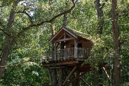 Chambre d'hote Vienne - Dormez dans les arbres