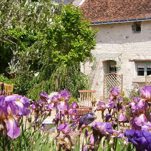 Bed & breakfasts Indre-et-Loire, from 80 €/Nuit. House of character, L`Ile-Bouchard Theneuil (37220 Indre-et-Loire), Charm, Guest Table, Garden, Net, WiFi, 4 Double Bedroom(s), 12 Maximum People, Lounge, Chimeney, Travel Cheques...