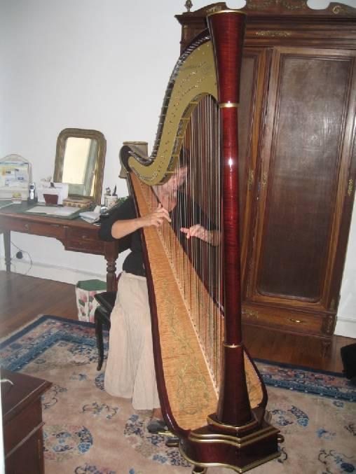 Chambre d'hote Ille-et-Vilaine - accueil musical