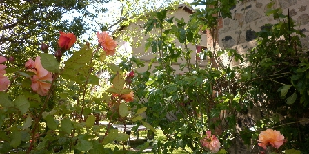 Maison d'hôtes de la Verrière Le jardin de Grégoire à La Verrière