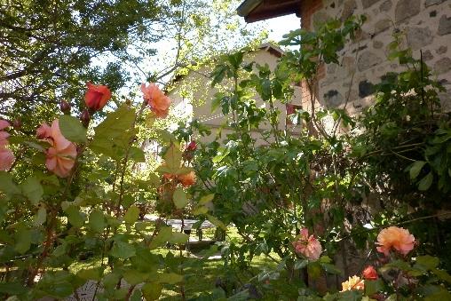 le jardin de Grégoire à La Verrière