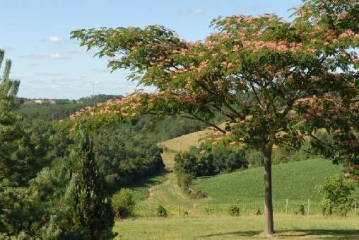 Chambre d'hote Dordogne - Nature généreuse sur 6ha