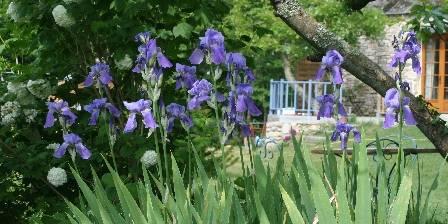 Chez Tante Phine Le jardin