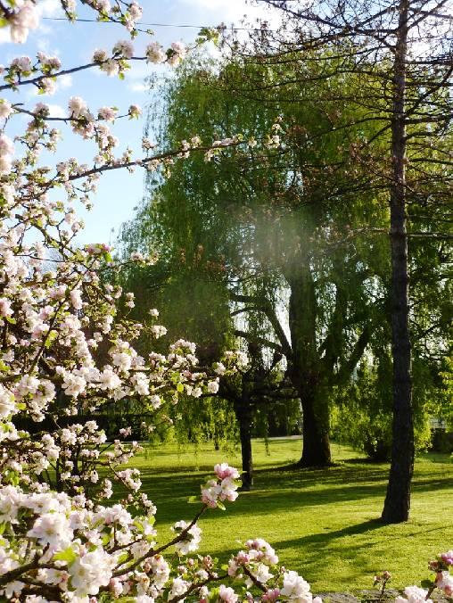 Chambre d'hote Haute-Saône - Un air de printemps