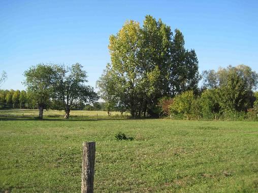 Prairies du Domaine