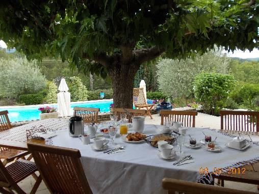Chambre d'hote Vaucluse - Petit dejeuner sous le murier platane