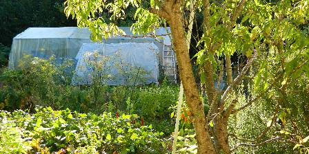 La Girouardière Vue de Topaze sur le potager