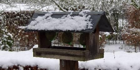 La Ferme De Beaupre L'hiver au jardin