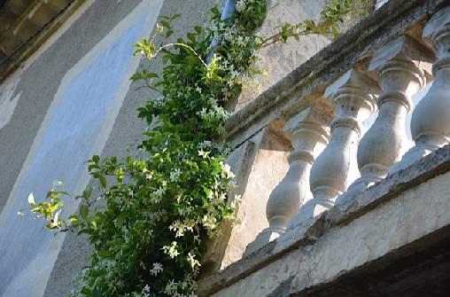 Chambre d'hote Gard -