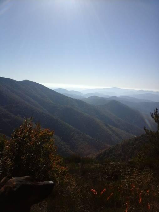 Montagne Cévenole