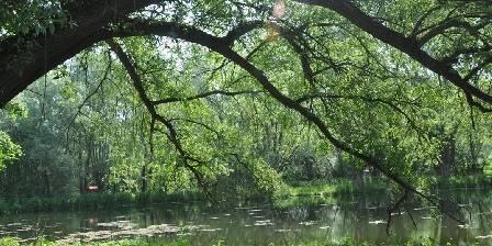 La Roulotte des Marais Environnement proche