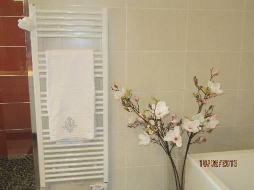 Grande salle de bains avec baignoire et douche à l'italienne