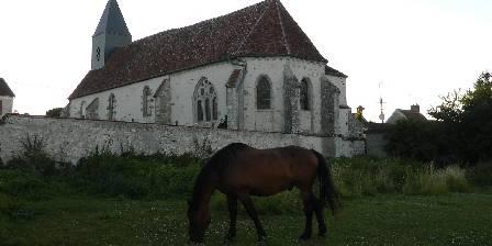 Le Relais de Libreval Gitan, notre cheval