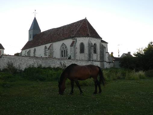 Gitan, notre cheval