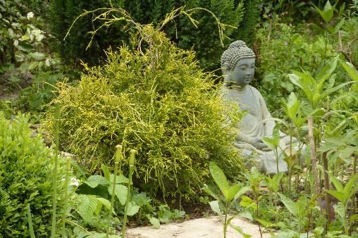 Petit coin en Zen