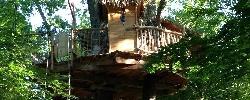 Chambre d'hotes Les Cabanes De La Romaningue