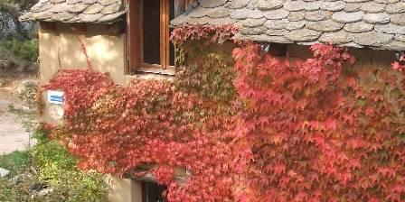 Gîtes du Chastel Gites en automne