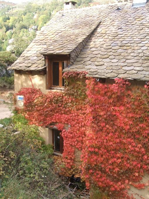 Chambre d'hote Lozère - gites en automne