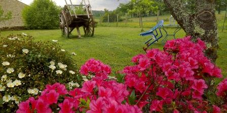 Chambre d'hotes Les Forges de Planechaud > jardin