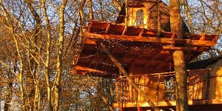 Cabanes du Bois Clair Canopée