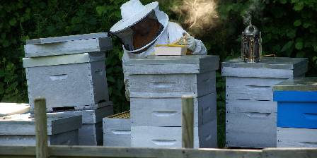La Laiterie Jean (the owner) in his apiary.