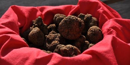 Chambres et table d'hôtes du Château Vieux Un panier de truffes