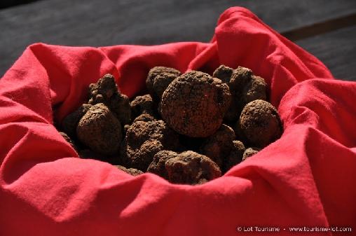 un panier de truffes