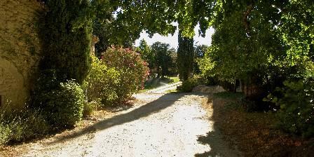 Domaine Saint Luc Le chemin d'accès à votre gîte