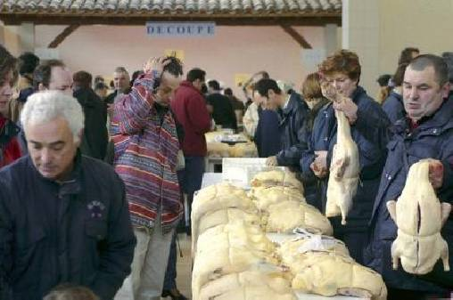 Le marché au gras a Samatan