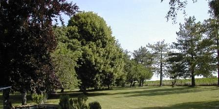 Le Grand Bois