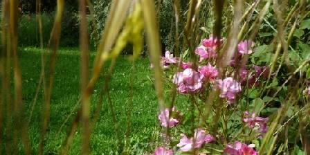 Les Maisons Fougère et La Bulle à Parfums Jardin arboré Jura