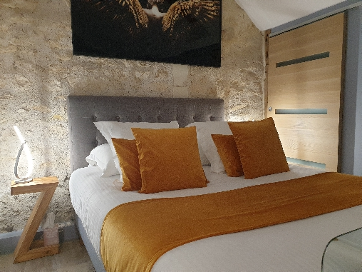 bed & breakfast Loir-et-Cher - The room Well-being