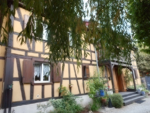 bed & breakfast Bas-Rhin - our property
