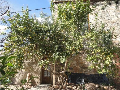 Chambre d'hote Pyrénées-Orientales - Le Mas Rovira