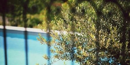 Bonheur et Bohème Vue piscine