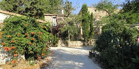 Mamie Joce Farmhouse Rovira