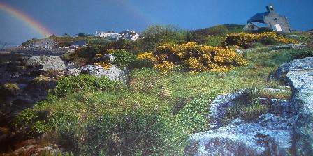 Les Bruyères du Mont Les Iles Chausey