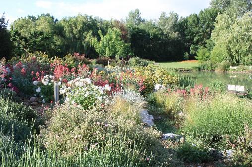 Chambre d'hote Vaucluse - parc fleuri
