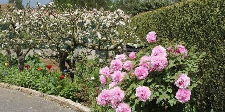 Le Jardin des Nosières Pivoines et pommiers
