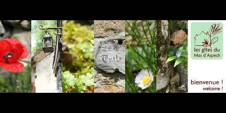 Les Gites du Mas d'Aspech Location gite lot quercy lalbenque