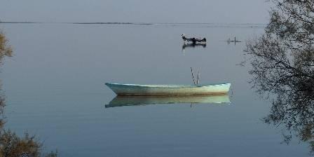Mas Bardouine Les étangs autour du Mas