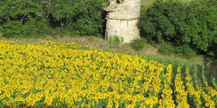 Maison d'hôtes Le Séminaire Paysage champêtre autour du village de Lurs
