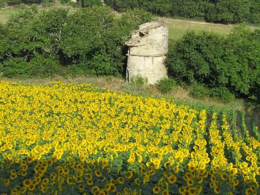 Paysage champêtre autour du village de Lurs
